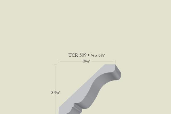 tcr509